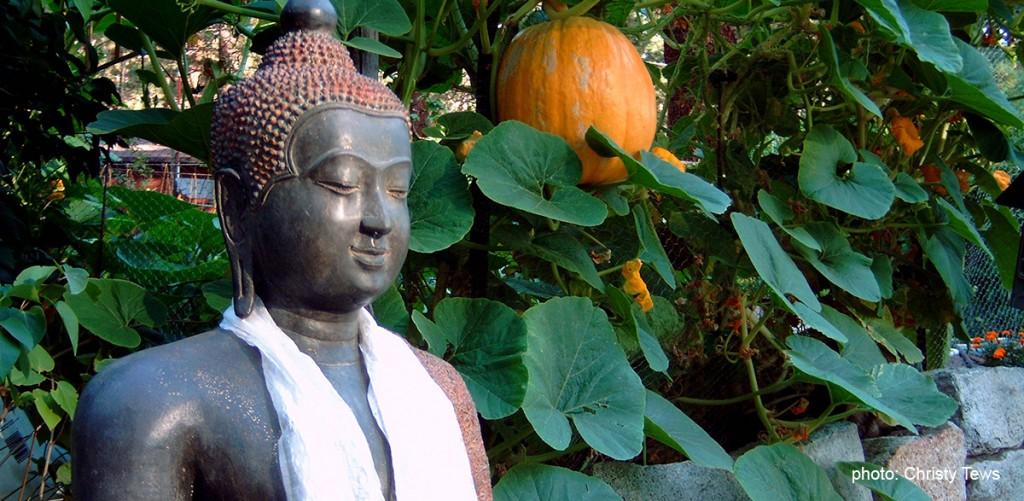 Buddha-talks2